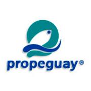 Propeguay